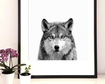 Animal print ,wolf print, woodlands nursery,wild animal print,wolf art,Kids Room print, forest animal print, wolf digital download