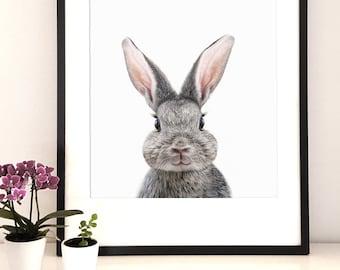 Woodland nursery,Animal print, bunny Print Wall Art, Woodlands Nursery Decor,Baby Shower Gift, Woodlands animal, Rabbit Photo, Bunny print,