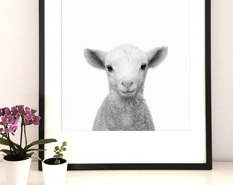 Animal Print , nursery print, Lamb print, Woodlands Nursery, sheep print, black and white, printable poster, woodlands wall art