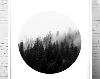 Modern wall art, Black and White Photography, nature wall art , Circle Print, Minimalist Art print, Forest Print, Trees