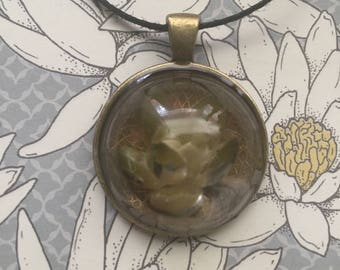 Real Succulent Resin Necklace
