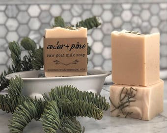 Cedar + Pine Goat Milk Soap