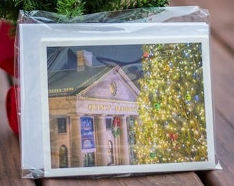 Boston photography Christmas note cards
