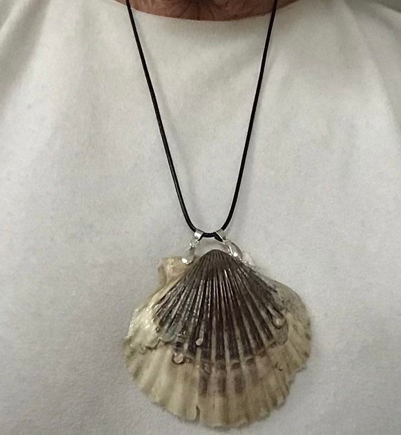 Large scallop shell necklaces.