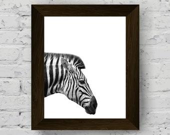 zebra print, jungle animal wall art, animal print nursery, black white animal, zebra poster, instant digital download, printable artwork