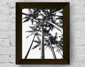 black and white palm photography, palm tree print, tropical wall art, modern poster art, instant digital download, printable artwork