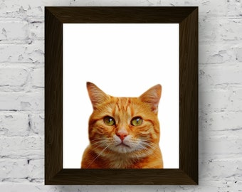 pet prints, cat photography, wall art prints for nursery, modern animal large poster, kids room printable artwork, instant digital download