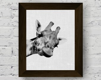 giraffe wall art print, black and white animal photography, safari animal print poster, jungle animals, digital download, printable art