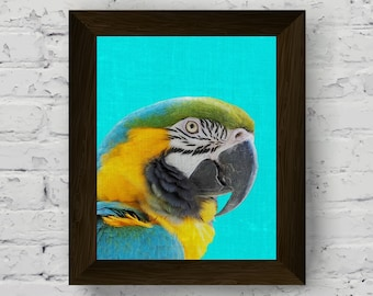 parrot wall art print, bird tropical poster, macaw tropical decor, parrot wall decor, bird printable artwork, instant digital download