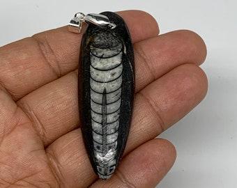 2.6 x 0.6 x 0.3 Black Orthoceras Fossils Pendant Polished Gemstones Marble Polished E0249 350 Millions years 10.8 Grams