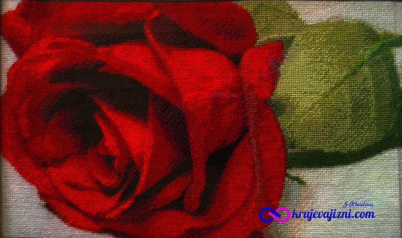 Схема для вышивки Роза image 0