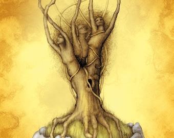Goddess Tree Art Postcard, Maiden Mother Crone Postcard, Women in Trees Card, Tree Magick Art Card