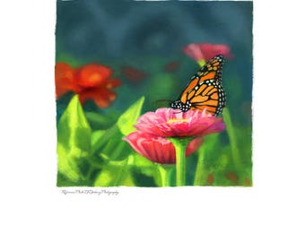 Digital Download Butterfly Art - Monarch Butterfly - Summer by Leanne Peters