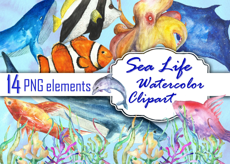 Sea life watercolor clipart fish clip art watercolor. Ocean   Etsy