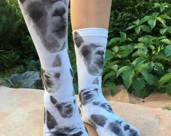 Mens athletic low cut Ankle sock Watercolor Llama Alpaca Cactus Short Cute Sock