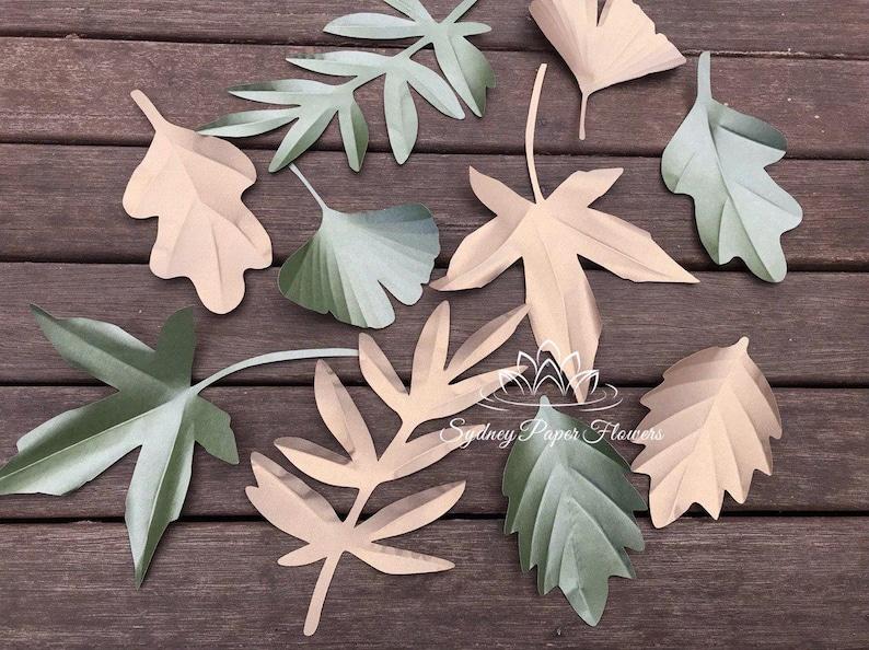Autumn Spring Paper Leaves Templates Set1 Tutorial Svg Pdf Cricut Silhouette Cameo Download Paper Flower Leaves Pattern Paper Flower Leaf