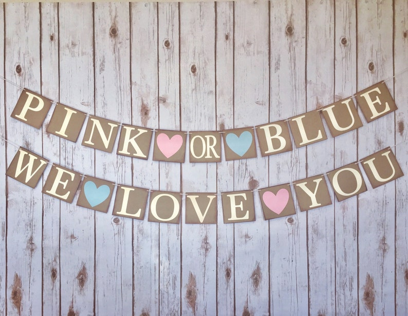 "Baby Shower Banner /""Pink or Blue We Love You/"""