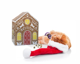 Cat Treat Advent Calendar