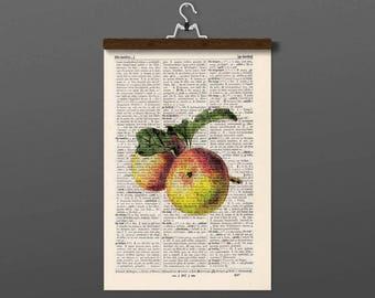 Pressure - Apple - antique book page