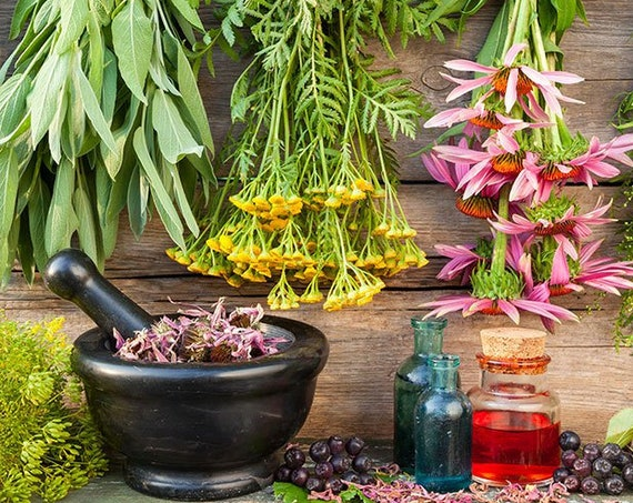 Organic Cold & Flu Support / Gluten Free/ Vegan / Non-GMO / All Natural