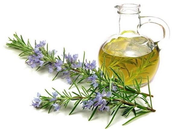 Organic Rosemary Herbal Oil / Apply Directly onto Skin or Hair / Gluten Free!