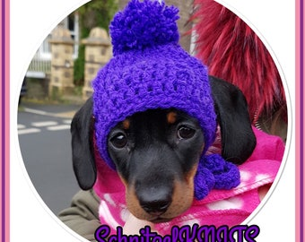 Dog bobble hat with holes for ears.  33a1f95682f