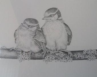 Michael N Oxenham framed limited edition print fledgling bluetits