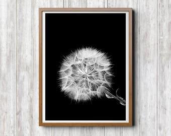 Löwenzahn, Schwarz Weiß Fotografie, Sofort Download, Schwarz Weiß Poster,  Löwenzahn Drucke, Schwarz Weiß Wandkunst, Minimal Kunst
