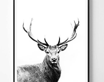 Awesome Black and White Deer Fabric