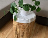 Side table, coffee table, tree trunk with wheels, driftwood from Remagen/Rhine, UPCYCLING