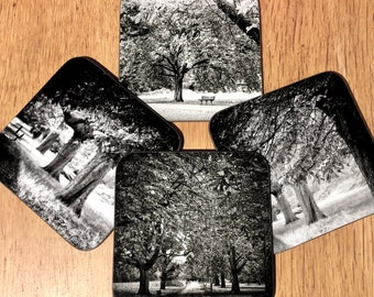 Chestnut Avenue, Tooting Common Coaster Set of 4 in an organza bag - an ideal gift for friends, family or yourself.