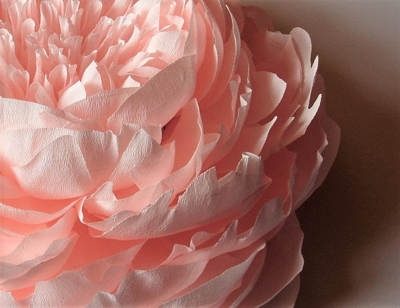 Crepe Paper Flowers Paper Peony Nursery Wall Decor Large Etsy