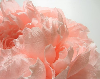 Large Crepe Paper Flower Peony for Wall to Order by the Piece