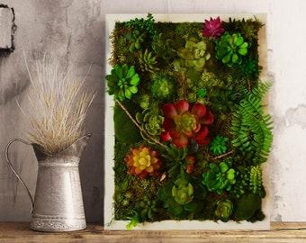 Moss Wall art, Succulent wall art, succulent gifts, succulent, Moss, vertical garden, succulent planter, Succulent Garden ,Moss art,