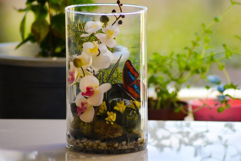 Terrarium Orchid Terrarium Orchid Table Centerpiece Plant Etsy