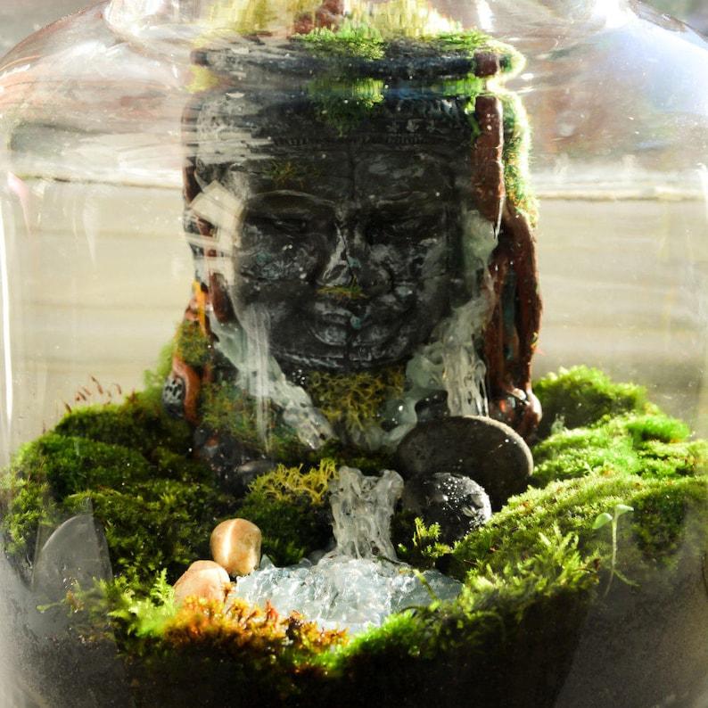 Moss Terrarium Buddha Terrarium Buddha D I Y Terrarium Kit Etsy