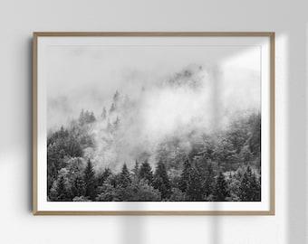 Black & White Forest Photography PRINT, Scandinavian Landscape Photography, Modern Minimal, Scandinavian Wall Art, Mountain Art Print | 112