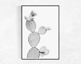 Cactus Print, Black And White, Modern Minimalist, Cactus Poster, Cacti Tropical Wall Art, Desert, Printable Art