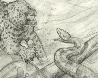Lords of the Jungle ORIGINAL DRAWING