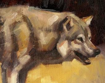 Wolf oil sketch ORIGINAL PAINTING