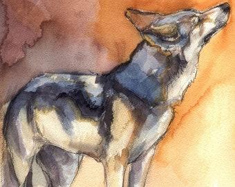 CANIS RUFUS Original Watercolor Painting