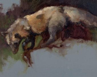 CROSS FOX STUDY