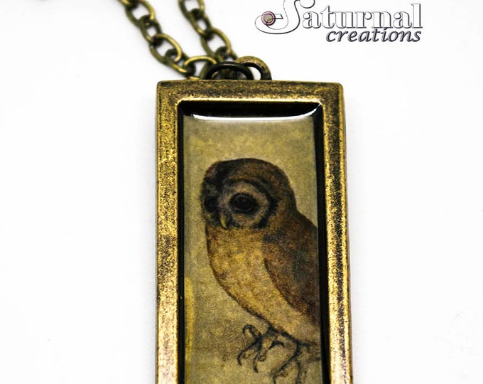 Wisdom: Animal picture necklace, Epoxy resin necklace, Bronze necklace, Vintage picture necklace, Vintage necklace