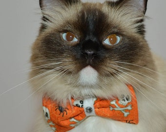 Halloween cat bow tie / cat collar bow tie / burnt orange white cat collar bow tie / Skulls bow tie / costume for pet /Crafts4Cats