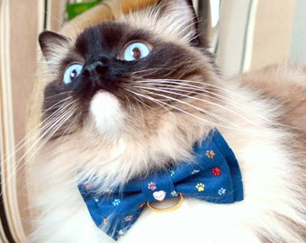 Cat Collar with blue bow tie - Blue bow tie for cats with collar - cat collar - blue cat bow tie - blue collar for cat