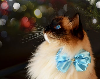 Christmas bow tie & cat collar / cat bow tie with collar / fancy cat bow ties / blue bow tie for cat / fancy satin bow tie / Crafts4Cats