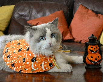 Cat Halloween costumeHalloween costumes for cats, glow in the dark cape, orange pumpkin, black cats, costume for dogs