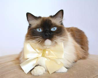 Fancy cat bow ties - Satin bows for cat with breakaway or non-breakaway buckle  - Cute pet bows - Large cat bow tie