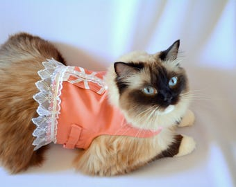Costume for cat/ Cute cat  jacket - Stylish corset look in peach - costume for cat -  harness for cat
