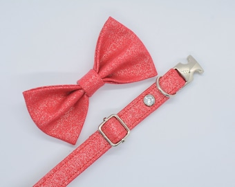 Glittery cat collar / kitten collar / small dog collar / safety cat collar / non-breakway cat or dog collar / breakaway cat collar